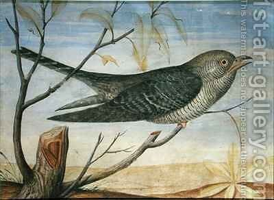 A Cuckoo perched on a Branch by Carlo Battaglia - Reproduction Oil Painting