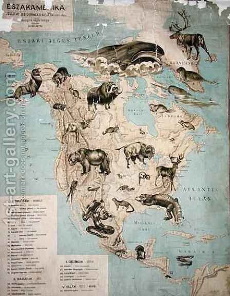 Map of animals in North America by Janos Balint - Reproduction Oil Painting