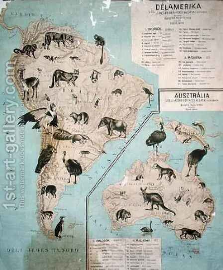 Map of animals in South America and Australia by Janos Balint - Reproduction Oil Painting