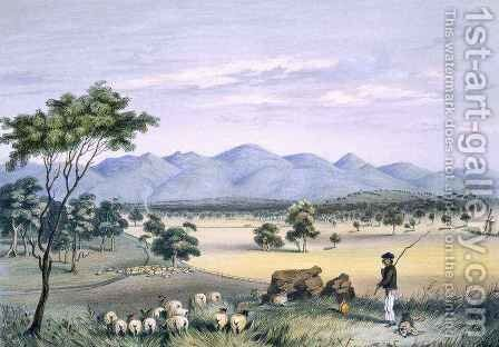 Lynedoch Valley looking towards the Barossa Range by (after) Angas, George French - Reproduction Oil Painting