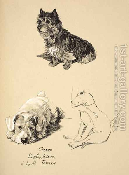 Cairn, Sealyham and Bull Terrier by Cecil Charles Aldin - Reproduction Oil Painting