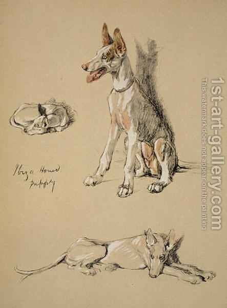 Ibiza Hound Puppy by Cecil Charles Aldin - Reproduction Oil Painting