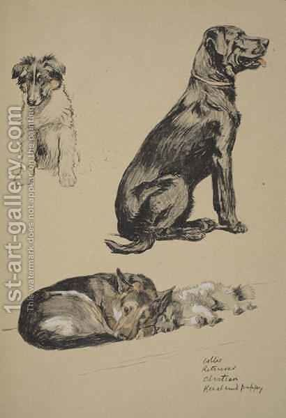 Collie, Retriever, Alstian and Keeshund Puppy by Cecil Charles Aldin - Reproduction Oil Painting