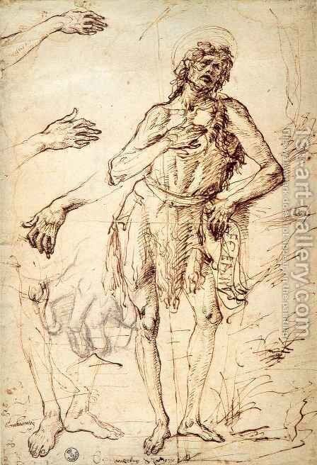 Studies of Saint John the Baptist, Hands and Feet by Antonio Del Pollaiuolo - Reproduction Oil Painting
