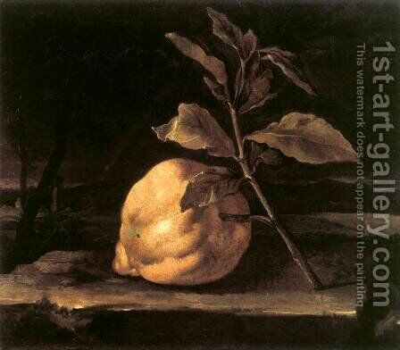 Large Citron in a Landscape by Bartolommeo Bimbi - Reproduction Oil Painting