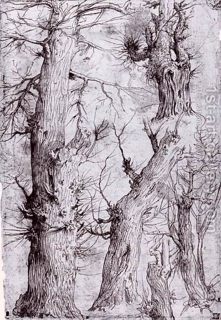 Studies of Trees by Aurelio Luini - Reproduction Oil Painting