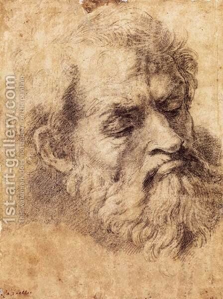 Study of the Head of an Apostle by Raphael - Reproduction Oil Painting