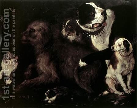 Portrait of Dogs with a Cat and a Rabbit by Italian Unknown Masters - Reproduction Oil Painting