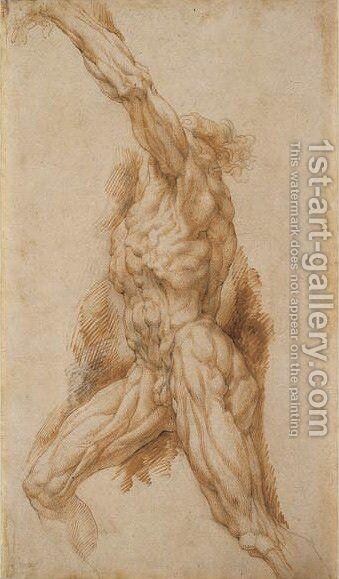 Anatomical Study of a Man Reaching Up to the Left by Rubens - Reproduction Oil Painting