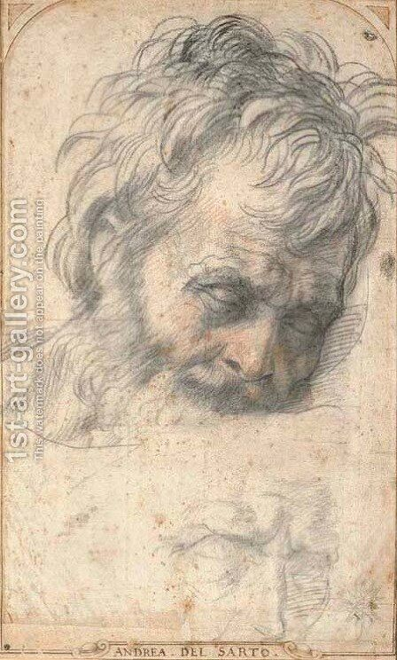 Head of Saint Joseph looking down by Andrea Del Sarto - Reproduction Oil Painting