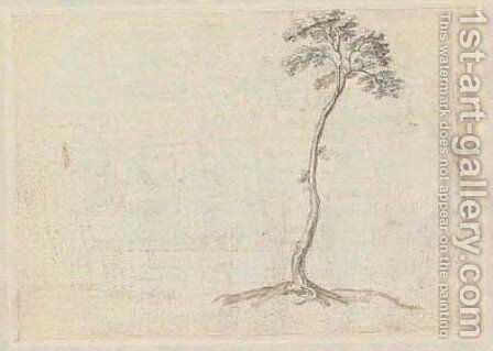 Study of a tree by Abraham Bloemaert - Reproduction Oil Painting