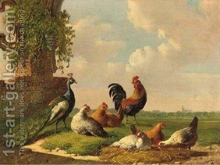 Poultry by a ruin 3 by Albertus Verhoesen - Reproduction Oil Painting