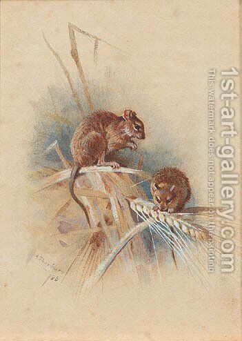 Two field-mice by Archibald Thorburn - Reproduction Oil Painting