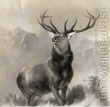 The Monarch of the Glen by (after) Landseer, Sir Edwin - Reproduction Oil Painting