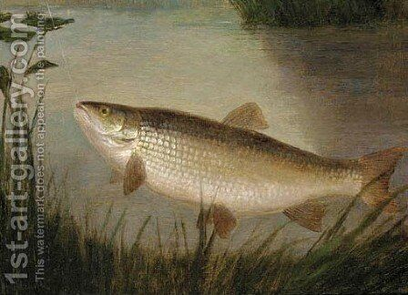A chub by A. Roland Knight - Reproduction Oil Painting