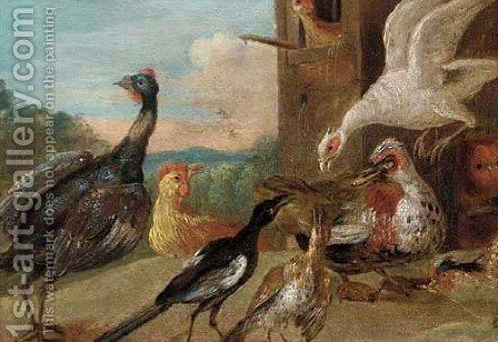 Guineafowl, a magpie, a Muscovyduck and other fowl in a farmyard by (attr. to) Kessel, Jan van - Reproduction Oil Painting