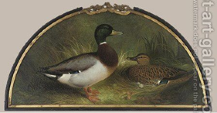 Making a nest by Abel Hold - Reproduction Oil Painting