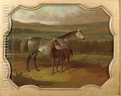 A grey and colt in a field at Bolton by (after) Herring Snr, John Frederick - Reproduction Oil Painting