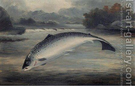 A fish by (after) A. Roland Knight - Reproduction Oil Painting