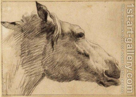 Study Of The Head Of A Horse by (after) Adriaen Van De Velde - Reproduction Oil Painting