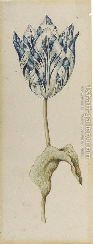 A blue parrot tulip by (after) Anthony I Claesz - Reproduction Oil Painting