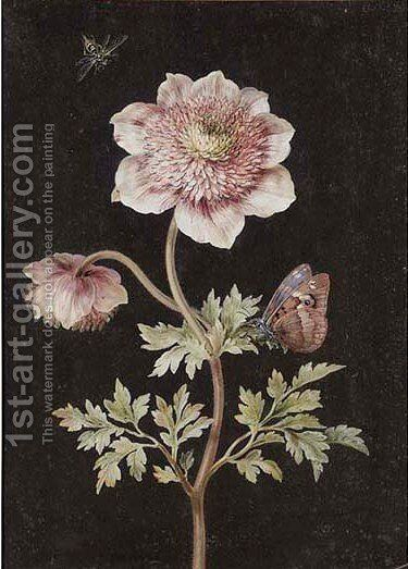 A scabious with a painted lady by (after) Barbara Regina Dietzsch - Reproduction Oil Painting