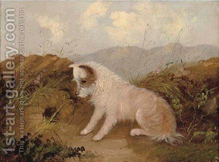 A patient terrier by a rabbit hole by (after) George Armfield - Reproduction Oil Painting