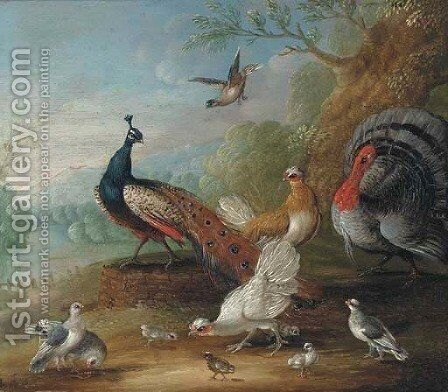 A peacock, doves, chickens and a turkey in a landscape by (after) Marmaduke Cradock - Reproduction Oil Painting