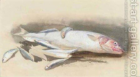 A study of fishes by (after) Samuel Phillips Jackson - Reproduction Oil Painting