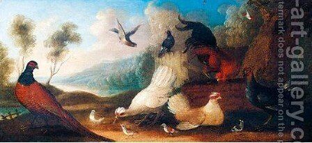 Assemblie Of Fowl by Marmaduke Cradock - Reproduction Oil Painting