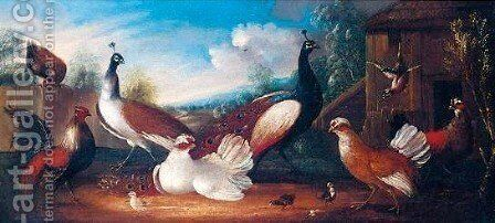 Assemblie Of Fowl 2 by Marmaduke Cradock - Reproduction Oil Painting