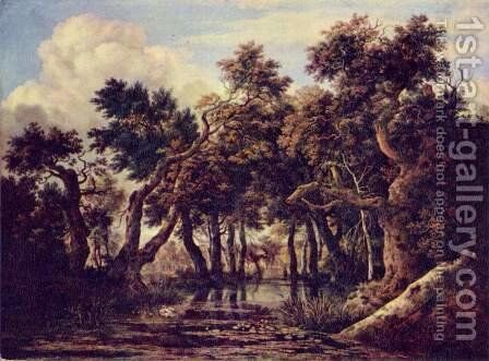 Landscape with swamp by Jacob Van Ruisdael - Reproduction Oil Painting