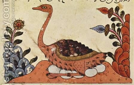 Image from The Book of Animals of al-Jahiz, Syria, 14th century. Arabian Ostrich. by Syrian Unknown Master - Reproduction Oil Painting
