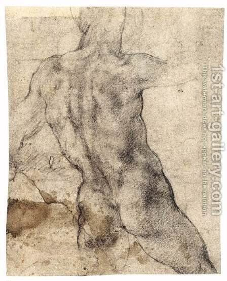 Male Nude, Seen from the Rear (recto) 2 by Michelangelo - Reproduction Oil Painting