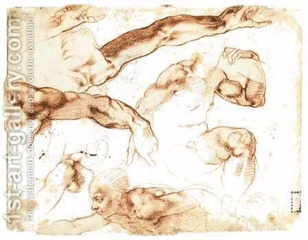Various Studies of Figures and Limbs (verso) by Michelangelo - Reproduction Oil Painting