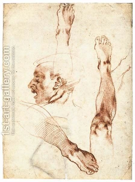 Male Head in Profile and Leg Studies (recto) by Michelangelo - Reproduction Oil Painting