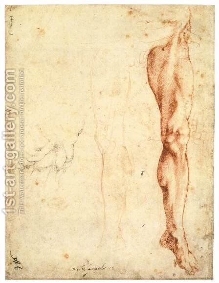 Study of a Left Male Leg (verso) by Michelangelo - Reproduction Oil Painting