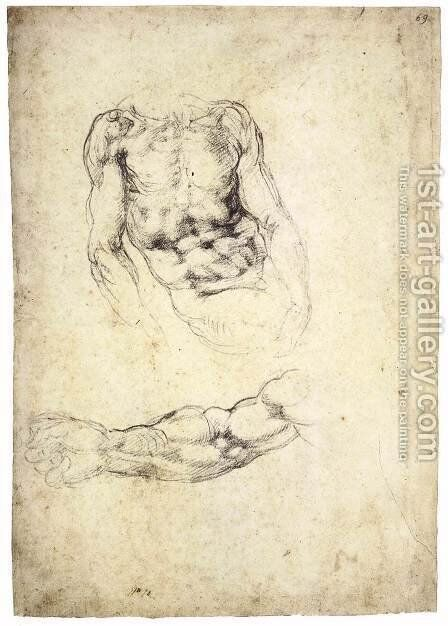 Upper Body of a Sitting Man and Study of a Right Arm (recto) by Michelangelo - Reproduction Oil Painting