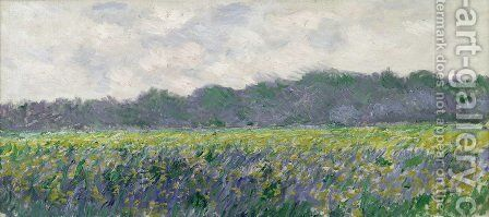 Field of Yellow Irises at Giverny by Claude Oscar Monet - Reproduction Oil Painting