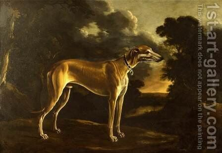 Portrait of a Greyhound with Pup by Michele Pace Del (Michelangelo di) Campidoglio - Reproduction Oil Painting