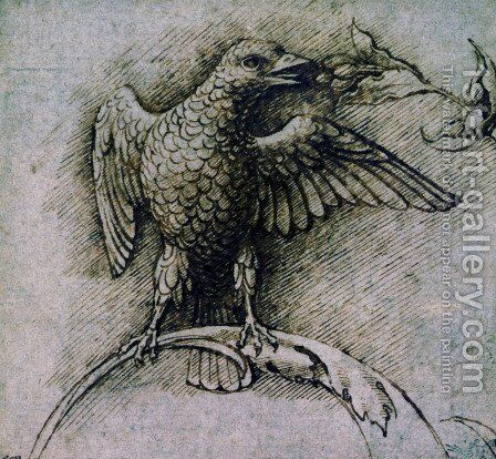Bird on a branch by Andrea Mantegna - Reproduction Oil Painting