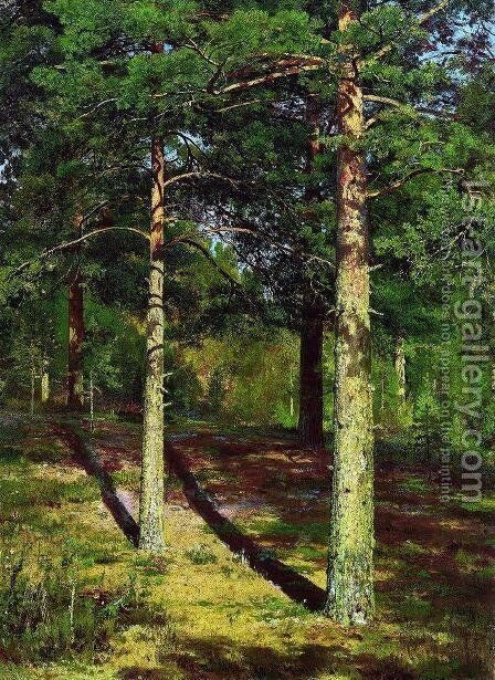 The Sun lit Pines 2 by Ivan Shishkin - Reproduction Oil Painting