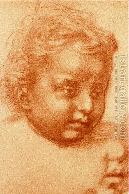 Head Of Child by Andrea Del Sarto - Reproduction Oil Painting