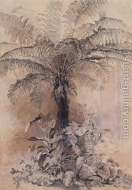 Tropical plants by Alexei Kondratyevich Savrasov - Reproduction Oil Painting