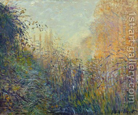 Study Rushes at Argenteuil by Claude Oscar Monet - Reproduction Oil Painting