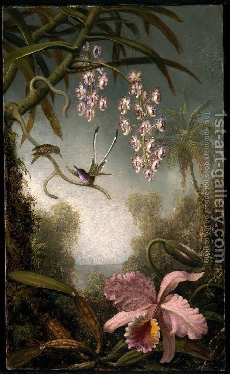 Orchids and Spray Orchids with Hummingbird by Martin Johnson Heade - Reproduction Oil Painting