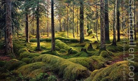 Forest cemetery by Ivan Shishkin - Reproduction Oil Painting