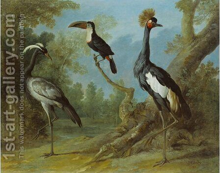 Demoiselle Crane, Toucan, and Tufted Crane by Jean-Baptiste Oudry - Reproduction Oil Painting
