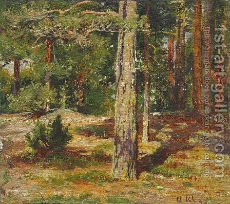 Pines. Summer Landscape by Ivan Shishkin - Reproduction Oil Painting