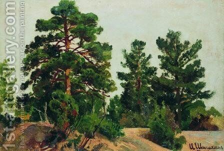 Young pines by Ivan Shishkin - Reproduction Oil Painting